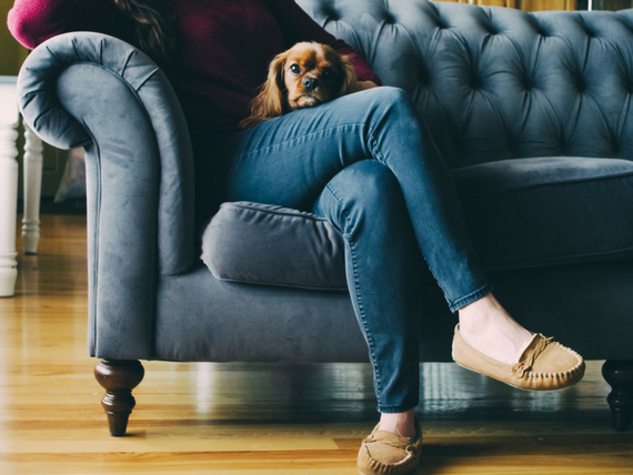Furniture Donation Tips for Pet Owners